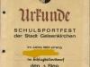 2160_Urkunde_Schlagball_1_1