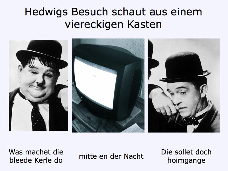 11 Hedwig Fernsehen11.001